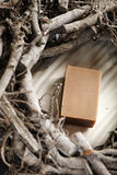 Bar natural soap. Bar of rustic brown soap with branches Stock Photo