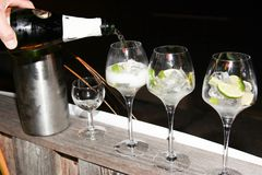 In a bar restaurant glasses of alcohol being served with champagne white wine. For mojito royalty free stock photography