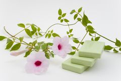 Bar Soap. Green Herbal Bar Soap Royalty Free Stock Image
