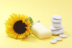 Bar of soap Stock Images