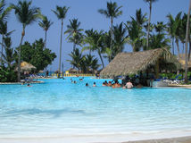 Bar tropical de regroupement Photographie stock