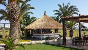 Bar under the palm trees Royalty Free Stock Photography