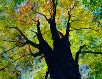 bara vända för tree Arkivfoto