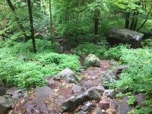 Baraboo-Klettern am Devils See Stockfotografie