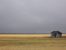 Baracca abbandonata nel campo dorato Immagini Stock