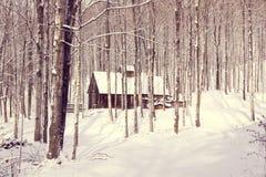 Baracca dello zucchero in foresta nevosa Fotografia Stock Libera da Diritti