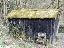 Baracca di legno dilapidata con la sedia fuori in terreno boscoso fotografia stock