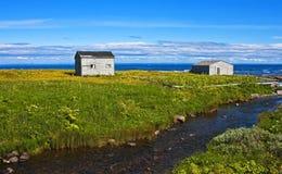 Baracche in mezzo dello splendore, Terranova Immagini Stock