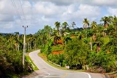 Baracoa, Cuba: paesaggio naturale Immagine Stock Libera da Diritti
