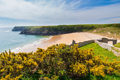 Barafundle Bay Wales Stock Photography