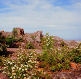 Baragas arga Wayside Royaltyfri Foto