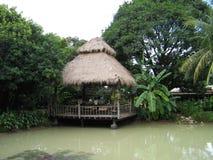 baraki egzotyczna dżungli Obrazy Royalty Free