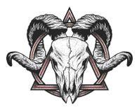 Baran czaszka z geometrycznym symbolem Zdjęcie Royalty Free