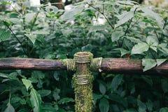 Barandilla de madera con la cuerda atada en rastro del bosque en el parque nacional de Doi Inthanon fotos de archivo