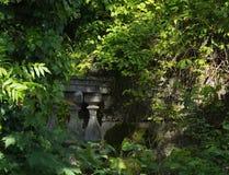 Barandilla de piedra demasiado grande para su edad con las plantas en el jardín viejo Imagen de archivo libre de regalías