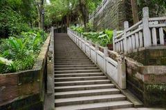 Barandillas sombrías del witn de la escalera de la piedra de la ladera en verano verde Imagenes de archivo