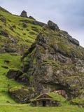 Barania pozycja na schronieniu w Iceland zdjęcia stock