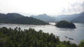 Barat de Sumatra en el crocoa de Indonesia Imagen de archivo