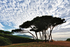 Baratti gulf, tuscany, italy. Original photo from tuscany, italy, landscape stock photos