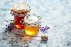Barattoli con differenti generi di miele organico fresco fotografia stock