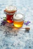 Barattoli con differenti generi di miele organico fresco immagine stock libera da diritti