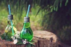 Barattoli con le paglie sul ceppo sotto l'albero, riempito di limonata fredda un giorno di estate caldo Fotografie Stock