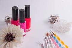 Barattoli con le vernici della vernice con le nappe per il manicure su un fondo bianco immagine stock