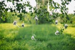 Barattoli decorativi con i fiori che appendono sui pizzi sulle foglie dell'albero in sole di estate Fotografie Stock Libere da Diritti