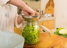Barattoli del kimchi Fotografie Stock