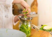 Barattoli del kimchi Fotografia Stock Libera da Diritti