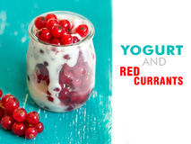 Barattoli del ribes rosso e del yogurt fresco Fotografie Stock