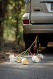 Barattoli di latta legati con i nastri Fotografia Stock Libera da Diritti