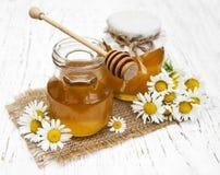 Barattoli di miele con la camomilla Fotografie Stock