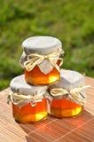 Barattoli di miele delizioso fresco Fotografie Stock