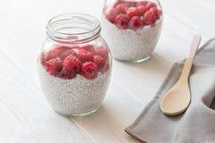 Barattoli di vetro di budino dai semi di chia con latte di cocco e la raspa Fotografia Stock Libera da Diritti