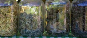 Barattoli di vetro con le erbe per cucinare Immagine Stock