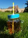 Barattolo del tè di ora legale sull'erba Fotografia Stock Libera da Diritti