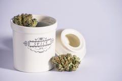 Barattolo della spezia con marijuana Immagini Stock