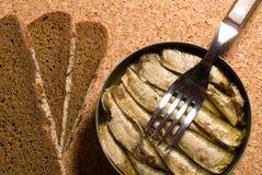 Barattolo di latta della sardina con pane Fotografia Stock