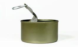 Barattolo di latta vuoto Fotografia Stock Libera da Diritti