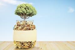Barattolo di vetro con le monete di oro e un albero Immagini Stock Libere da Diritti