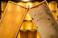 Barattolo di vetro del miele giallo dorato sulla struttura dei comp. dello spazio della copia del primo piano del bordo di legno  Fotografie Stock Libere da Diritti
