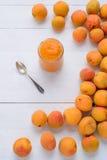 Barattolo di vetro del purè dell'albicocca delle albicocche fresche Fotografia Stock Libera da Diritti