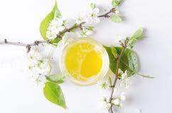 Barattolo di vetro di miele, parecchi rami del fiore su superficie bianca Colpo fresco e leggero di umore della primavera, fotografia stock libera da diritti