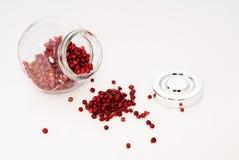 Barattolo di vetro in pieno dei semi del peperone Fotografia Stock