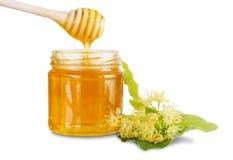 Barattolo pieno con il miele del tiglio, i fiori della calce e la sgocciolatura del miele dal merlo acquaiolo nel barattolo di ve Immagini Stock