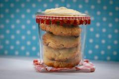Barattolo in pieno di cioccolato Chip Cookies Fotografie Stock