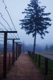Barb-Draht in WWII auf der Grenze Stockbild