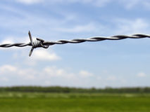 Barb wire Stock Image