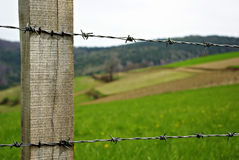 Barb Wire. Green grass meadow at sunny summer day, wooden pole and barbed wire Stock Photos